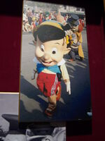 Pinocchiobighead