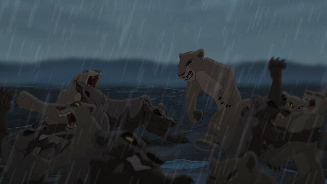 File:Lion-king2-disneyscreencaps.com-8061.jpg