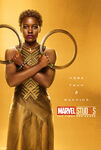 Poster gold nakia