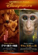 Bears-MonkeyKingdom JP POSTERS