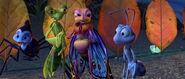 Bugs-life-disneyscreencaps.com-6894