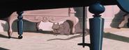 Rat(LadyandtheTramp)