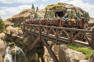 Seven Dwarfs Mine Train 07