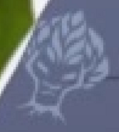 BungaMarkScreenshot