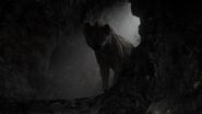 Lionking2019-animationscreencaps.com-3109
