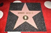 Star of Minnie Mouse at Hollywood Walk of Fame