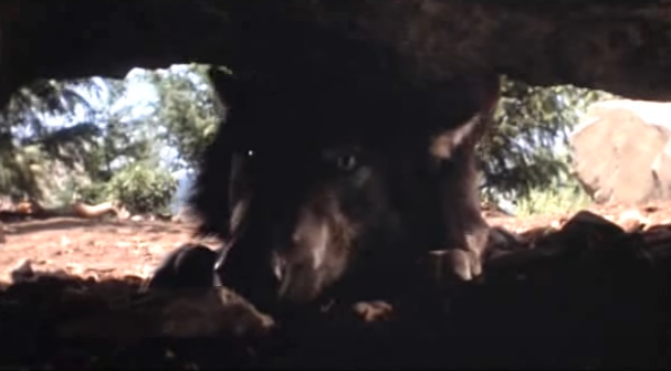 File:Timber Wolf 23.png