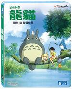 Totoro Taiwan 2
