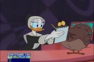 Daisy wants Turkey's autograph