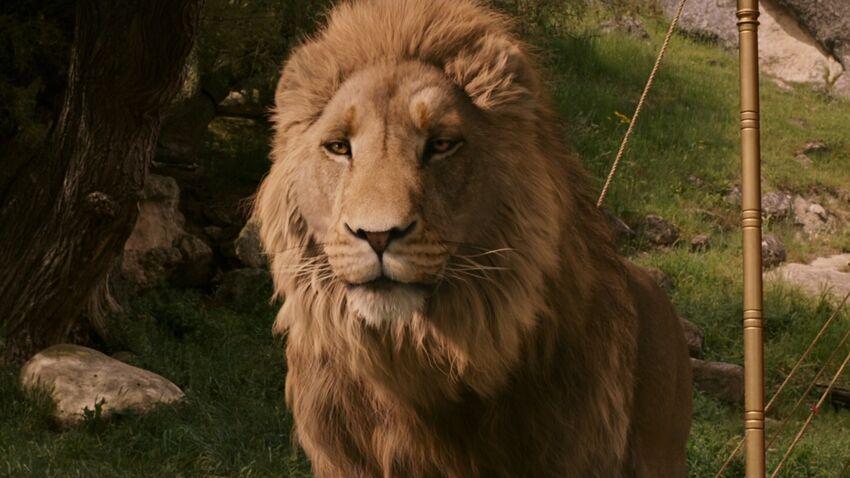 Le Roi Lion [Disney - 2019] - Page 35 850?cb=20190425153721
