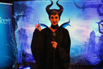 Maleficent 24 hours WDW