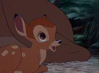 Bambi-disneyscreencaps.com-450