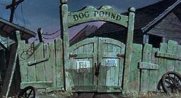 DogPound1
