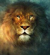 Narnia aslan