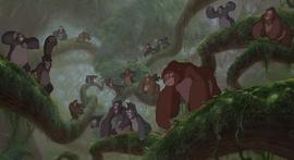 Manada Gorilas