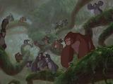 La Manada de Gorilas