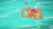 Octopus05