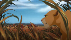 Lion-king2-disneyscreencaps.com-3763