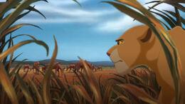 Lion-king2-disneyscreencaps.com-3763