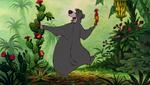 Baloo Picking