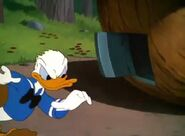 Donald Duck All In A Nutshell (1949)21
