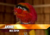 Muppet spotlight 13