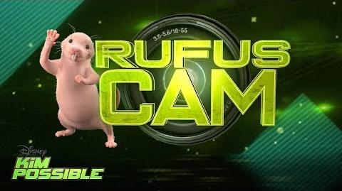 Rufus Cam Kim Possible Disney Channel Original Movie