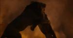 Simba Fighting Scar