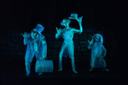 Beware-of-Hitchhiking-Ghosts
