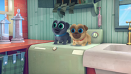 Puppy Dog Pals (007)