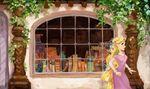 RapunzelLibrarySW