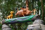 TLK Photo Op Animal Kingdom