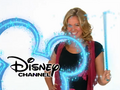 29. Tiffany Thornton ID (January 1, 2009-June 30, 2010)