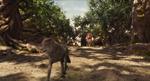 Jungle Book 2016 125