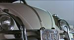 The-Love-Bug-27