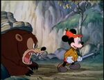 Bear Growls at Mickey