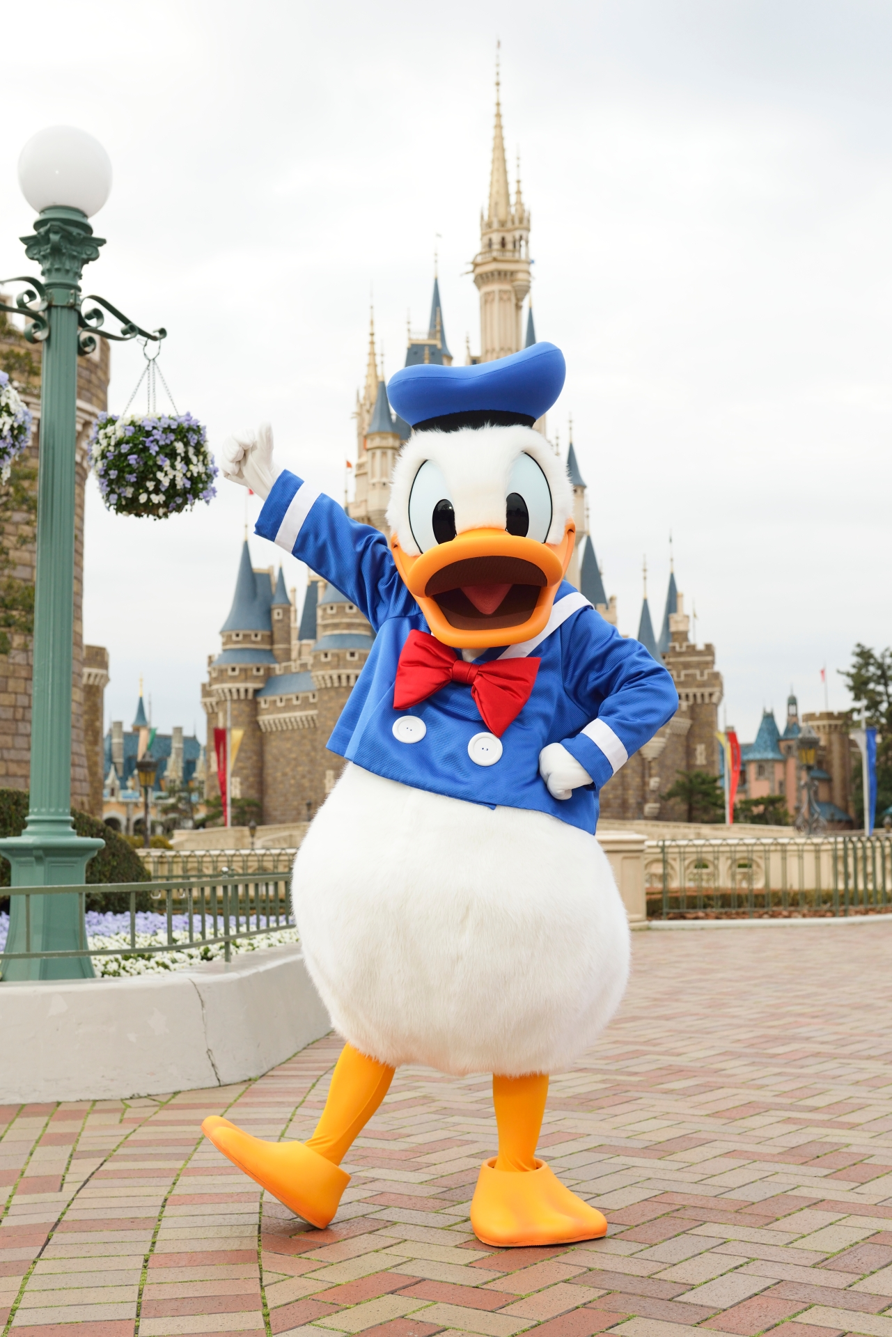 Tokyo Disney Resort Ltd Cap Mickey Mouse and Donald Duck  with Flash