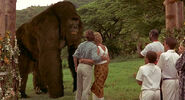 Mighty-joe-young-disneyscreencaps.com-12611
