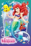 Ariel-disney-princess-37275483-680-1000
