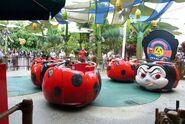 Francis-Ladybug-Boogie