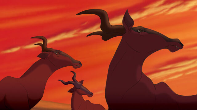 File:Lion-king-disneyscreencaps.com-13.jpg