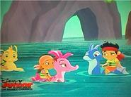 Seahorse -Crew01