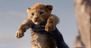 Baby Simba from Remake 3