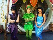 Disney Fairies at Pixie Hollow Vidia Tinker Bell Silvermist