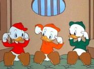 Huey-Dewey-Louie, Officer