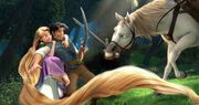 Tangled Promotional