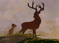 Bambi2 3