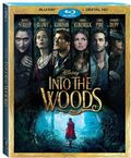 Into the Woods Blu-Ray DVD Cover