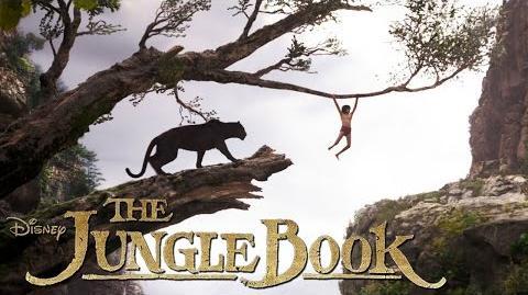 THE JUNGLE BOOK - Baghira - Ab 14