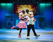 NEW Mickey-Minnie DOI fyh